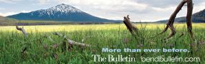 The Bulletin picutre