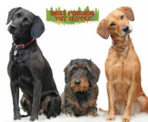 picture of 3 dogs and pet store logo